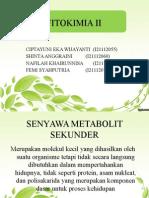 Fitokimia II