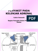 178612907 Penyakit Kel Adrenal Ppt