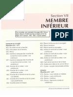 Anatomie - Netter - Membre Inférieur