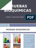 Pruebas Bioquimicas en Microbiologia