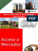 Nuevos Mercados y Oportunidades Para El Peru