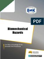 16-Hazard-Biomechanical.pdf