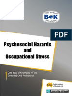 19-Hazard-Psychosocial.pdf