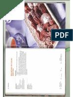Bolachas de cacau sem ovo.jpg.pdf