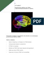 Adultos_TDAH_cerebrofugitivo
