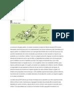 Dogma Monetarista - Vinculación Causal Emisión e Inflación