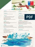 Afiche Efemerides MMA 2015