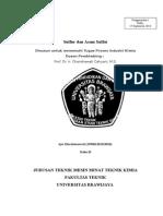 Paper PIK- Sulfuric Acid.docx