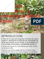 INTRODUCCION A LAS CERTIFICACIONES.pptx