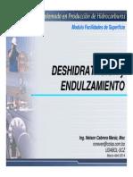 FS U3 302B Deshidratacion y Endulzamiento