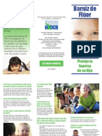 FVB_Varnish_Brochure-SP_256392_7.pdf