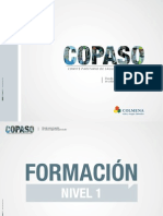 Cartilla Copaso.pdf