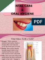 Dental Care & Oral Hygiene