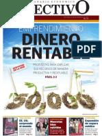 Revista Económica de PL Dinero Rentable