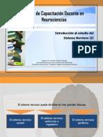 Introducci+¦n al Sistema Nervioso III.pdf