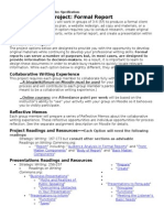 formal report project optionsw15