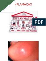 Aula 7 - Inflamação e Reparação2014