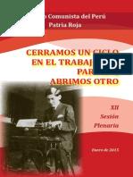 Informe Al XII Pleno_PCdP-PR.-2015