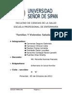 FAMILIA Y VIVIENDA SALUDABLE.docx