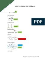 Moléculas Orgánicas y Vida Cotidiana (1)