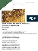 Polen de Soja GM en Miel Mexicana Afecta Su Exportación - SciDev