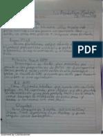 ces2015Inno_LuisFlores.pdf