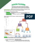 rangkuman pohon filogeni.docx