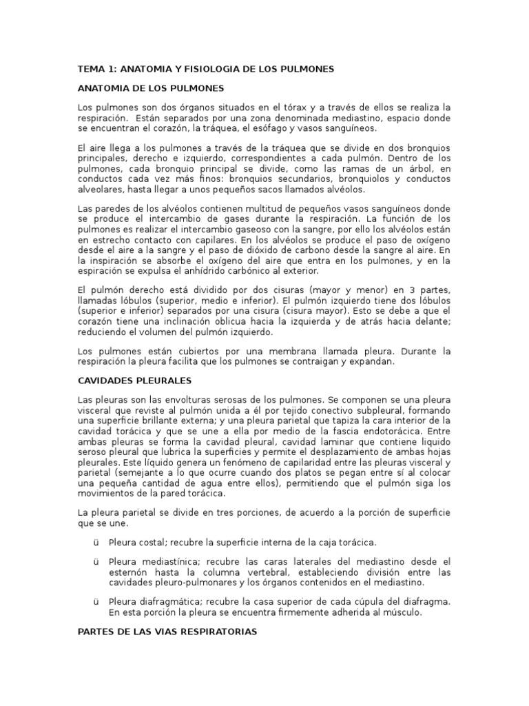 Increíble Anatomía De La Caja Torácica Y Los órganos Friso ...
