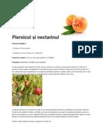 intretinerea nectarinilor