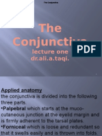Theconjunctiva2lecturesbydr Ali 101122073426 Phpapp01