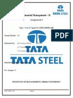 Fm2 Tata Steel Ltd.