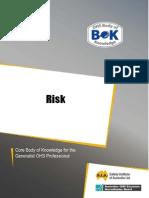 31-Risk.pdf