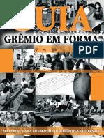 Guia Para Formação de Grêmio Estudantil