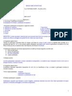 Test IX-Active Imobilizate-rezolvare Si Punctaje