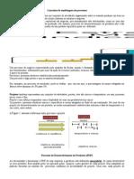 Conceitos de Modelagem de Processos
