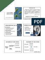 Slides Sistema Nervoso