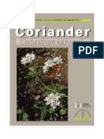 Coriander Coriandrum Sativum