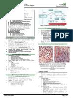 OS 214 E1 20150218 LEC 08 Pathology of Tubular Diseases
