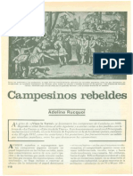 Campesinos Rebeldes