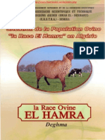 eBook La Race Ovine El Hamra