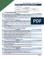 Ficha de Monitoreo y Asesoria Del Directivo