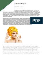 HTML Article   Mascarilla Cabello (13)