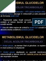Curs 11 - Ciclul ATC