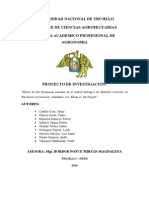 Proyecto de Vaccinium Myrtillus - Final