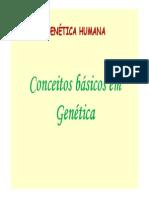Aula Genetica