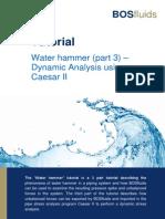 WaterHammer CAESER