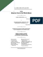 Amicus Brief  by Meusa to Scotus