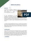 Terminologías Medicas