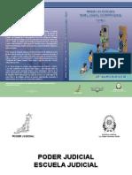 BURGOS M Alvaro manual de derecho penal juvenil T I.pdf