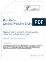 Plan Rector Bovino Carne BCS
